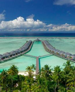 Maldív sziget