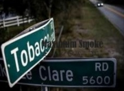 nikotinos-alapok